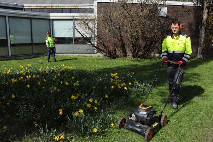 Työpaja Viitakummun nuoria leikkaamassa nurmikkoa ja haravoimassa.